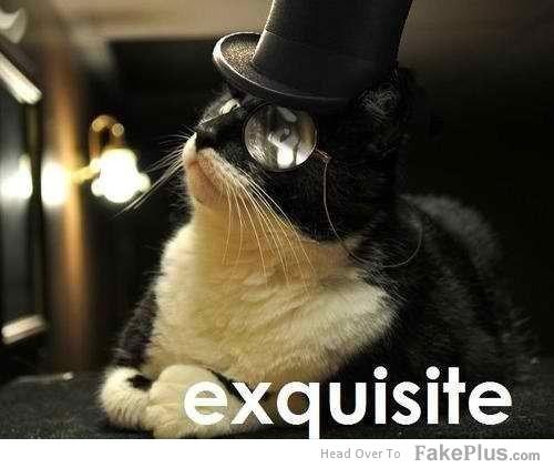 exquisite_20120529113252